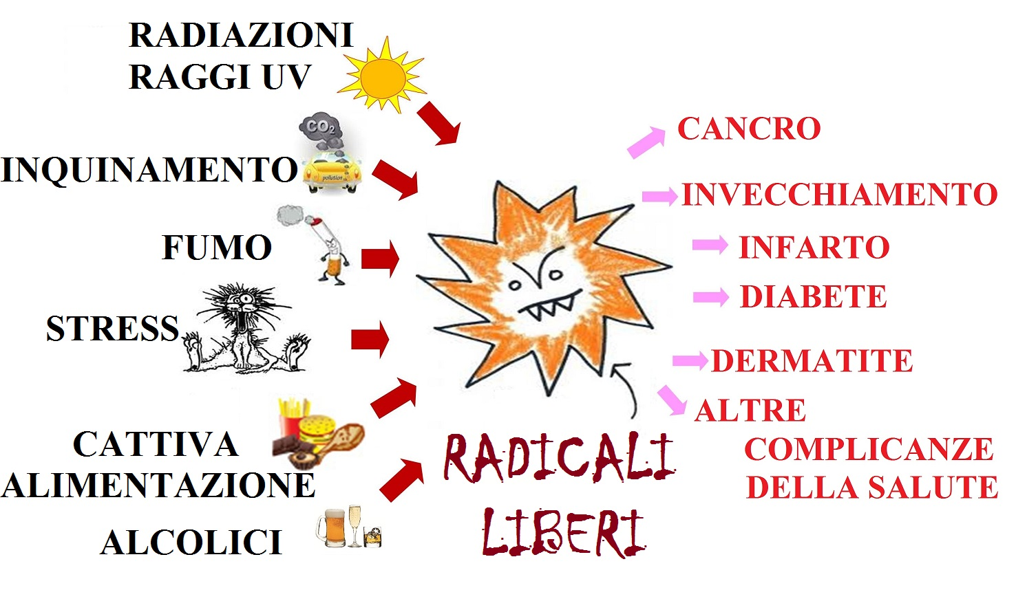 Risultati immagini per radicali liberi