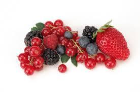 i frutti di bosco