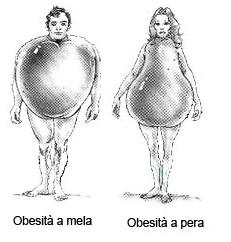 Come è distribuito il grasso nei due sessi