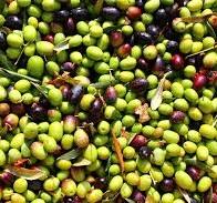 Gli studi sulla Dieta Mediterranea