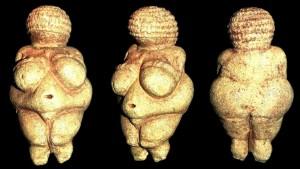 Nella donna il grasso a cosa serve?