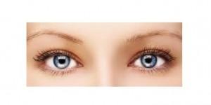 Anche l'occhio vuole la sua parte. Psicobiologia dell'alimentazione