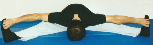 Allargando le gambe il più possibile si porta la faccia verso il basso aiutandosi con le mani ai piedi.
