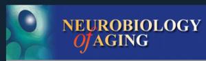 cervello degli obesi invecchia prima