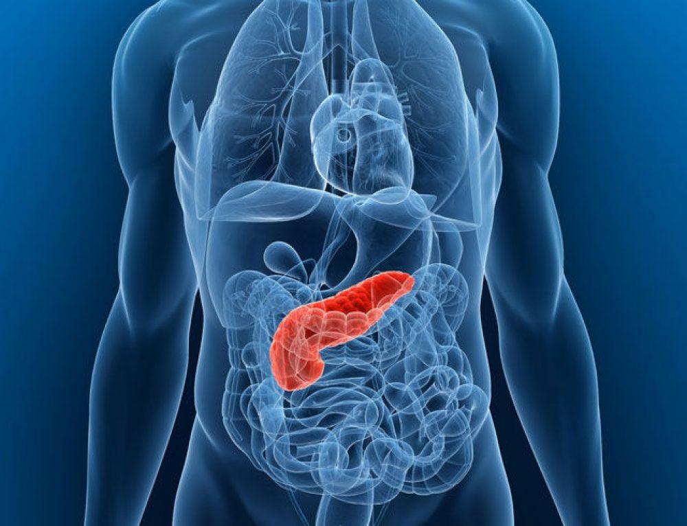 Tumore del Pancreas. Prevenzione e dieta Zona