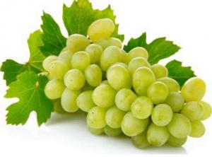 Uva, caratteristiche e proprietà nutrizionali